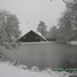 Kippekausen im Winter